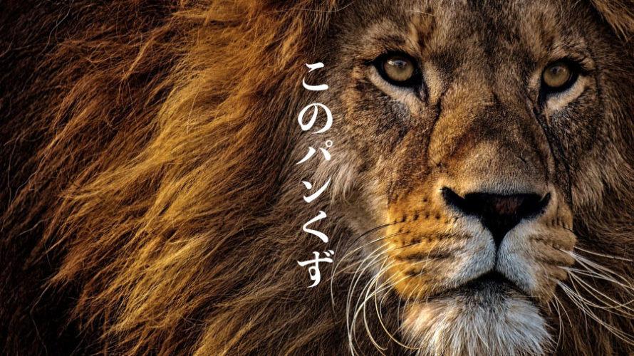 【LION BLOG】パンくずリスト警告の解決法【data-vocabulary.org schema deprecated】
